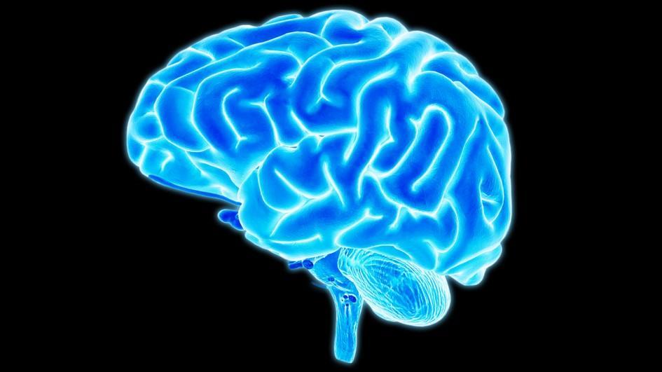 El dolor lumbar crónico afecta a nuestro cerebro
